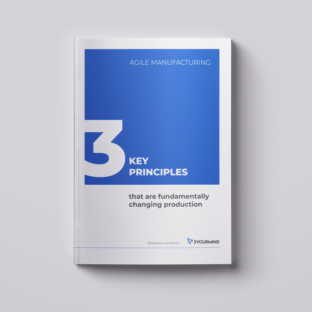 Agile Manufacturing White Paper Cover